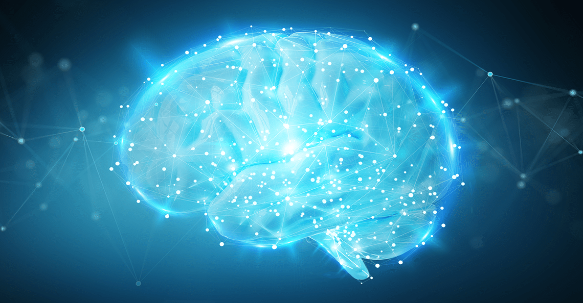 model of 3D brain technology