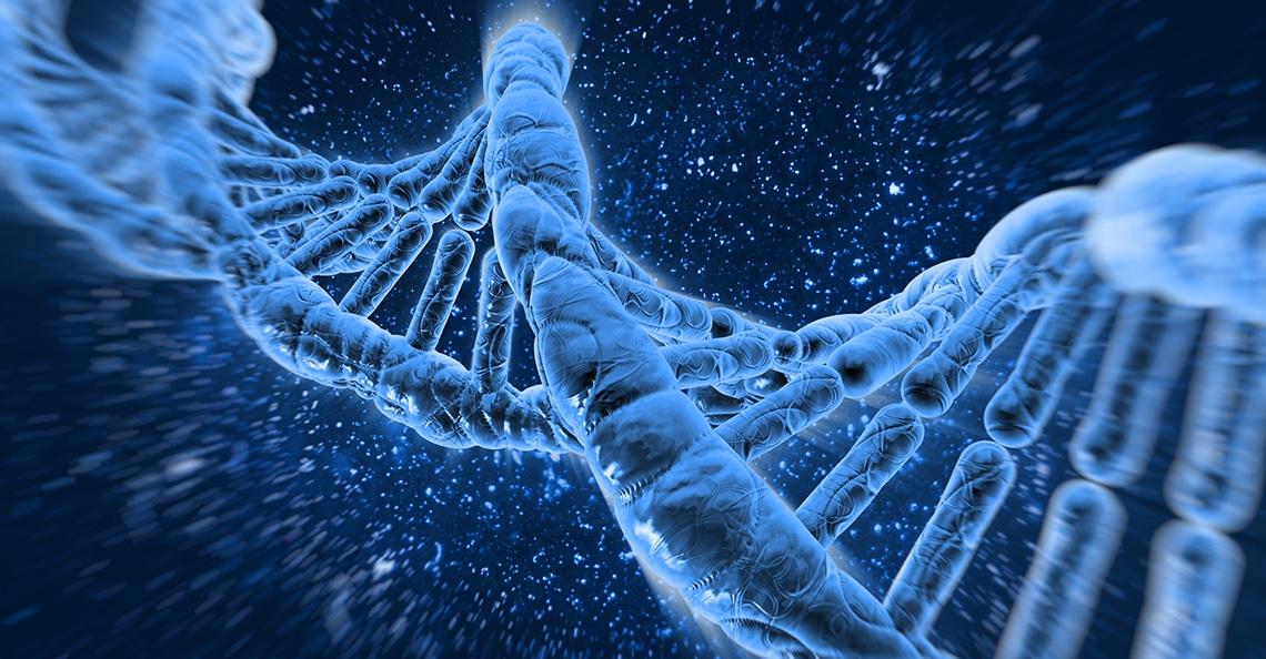 Entheon-DNA