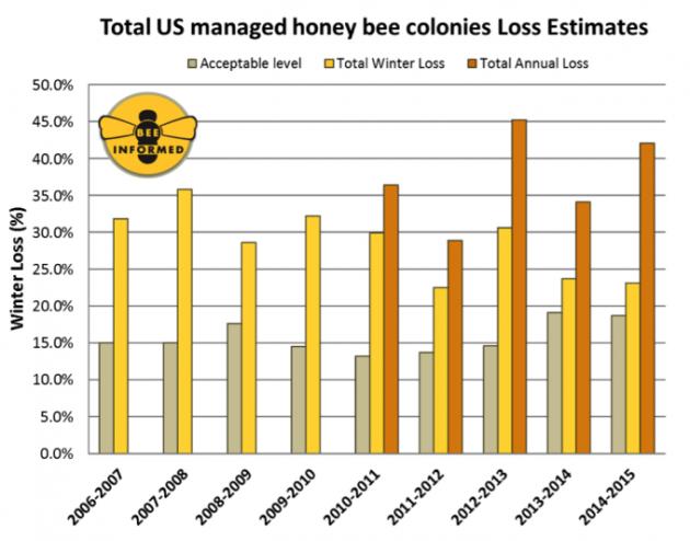 bee-losses