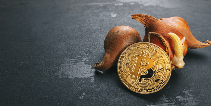Bitcoin comparison to Tulip Mania