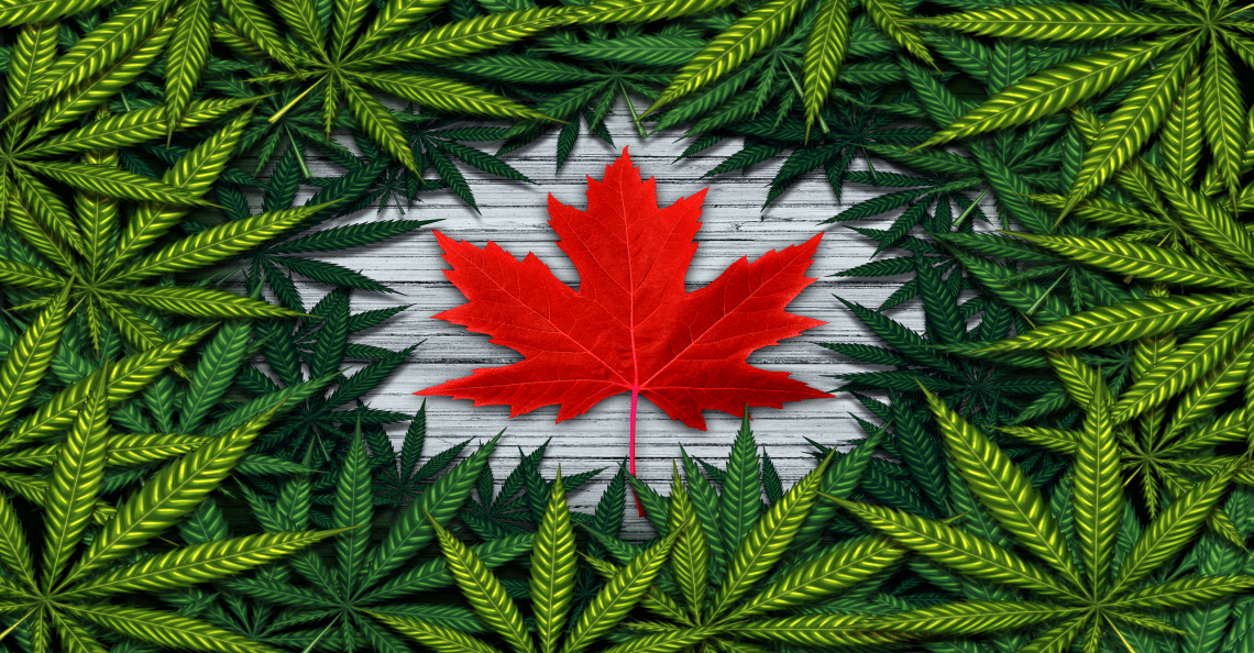 Canadian Marijuana Sector faces opportunity