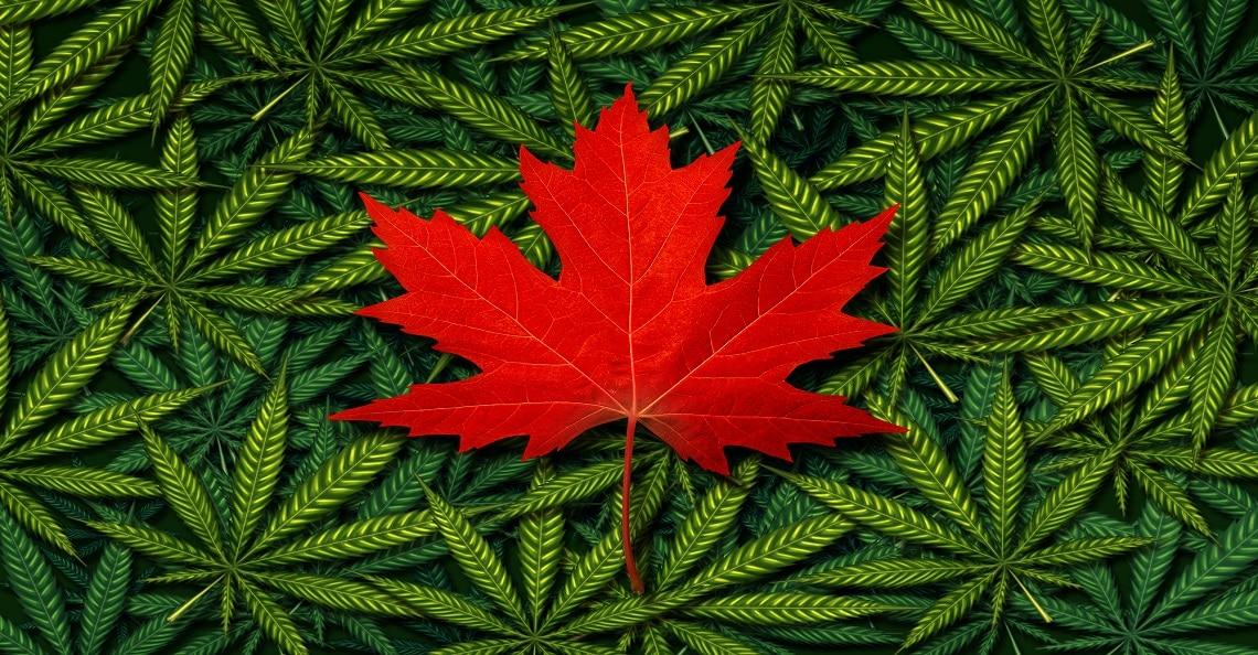 canada's cannabis sector