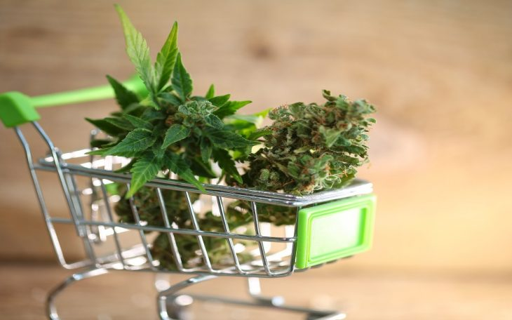 cannabis retail sales continue to rise in Canada