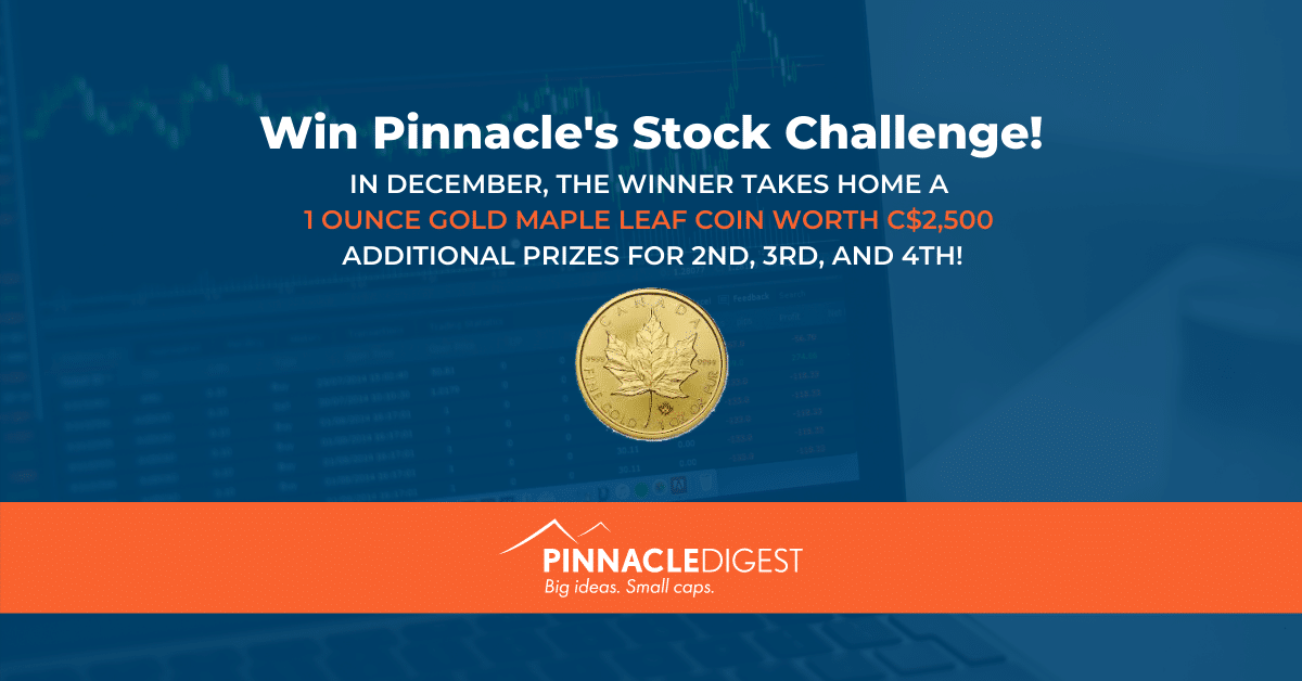Stock Challenge Grand Prize for December Only