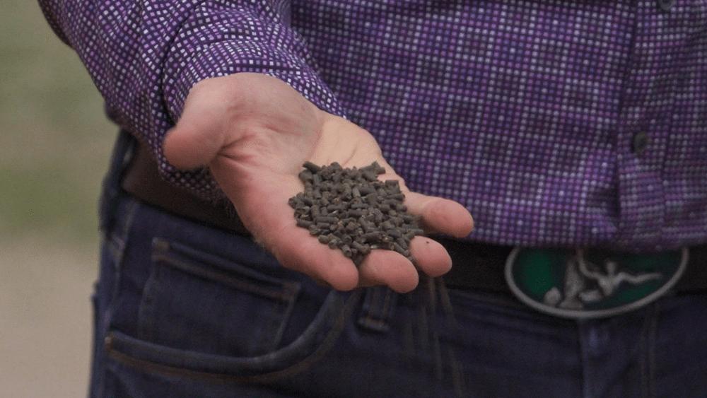 EarthRenew's base organic fertilizer formulation in its pelleted form factor.