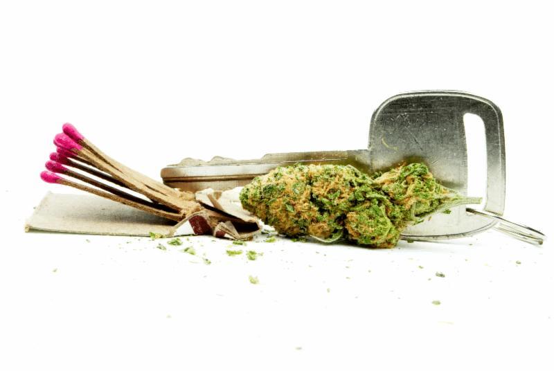medical marijuana sector