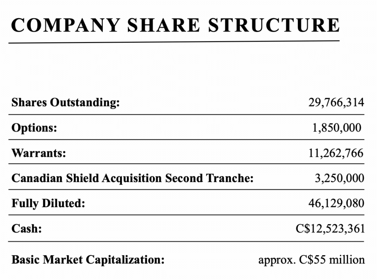 Trillium Gold Mines share structure as of October 21, 2020