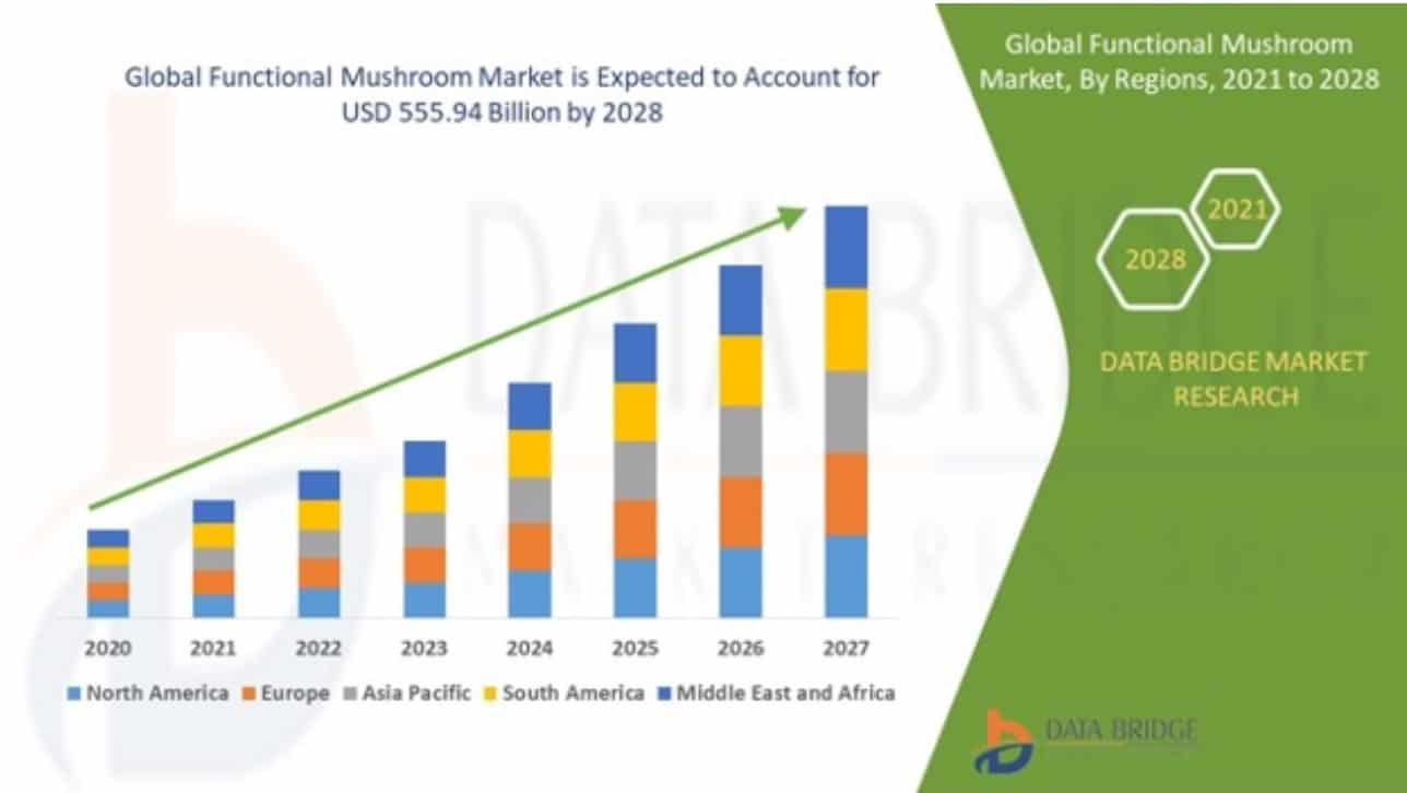 Global functional mushroom market forecast from 2020 to 2027