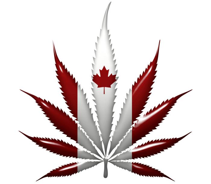 Canadian marijuana market seeks exports