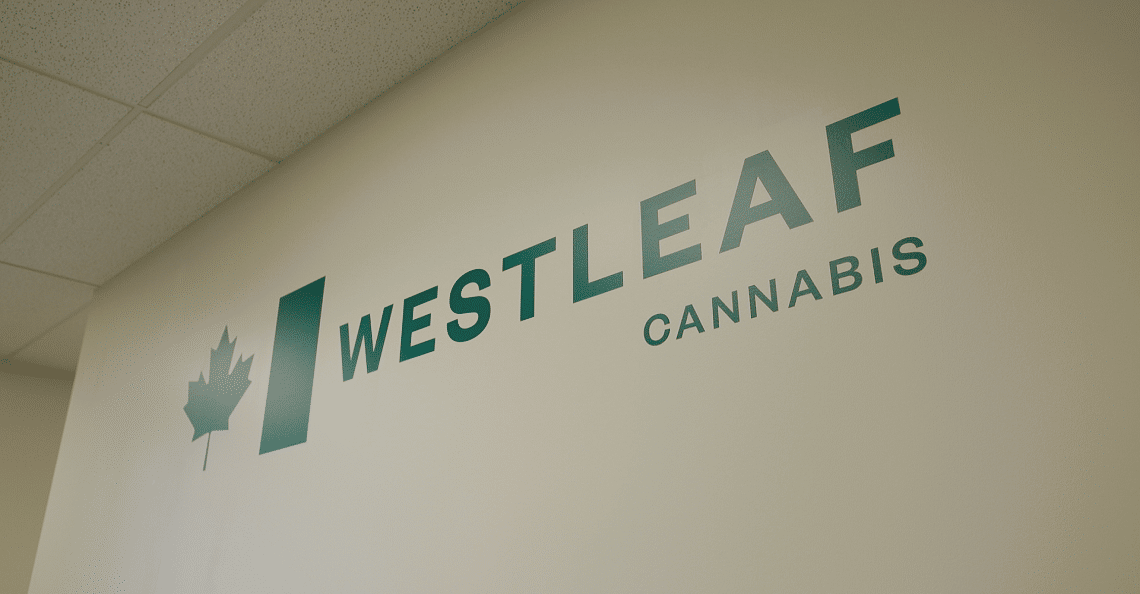 Westleaf cannabis logo on white wall