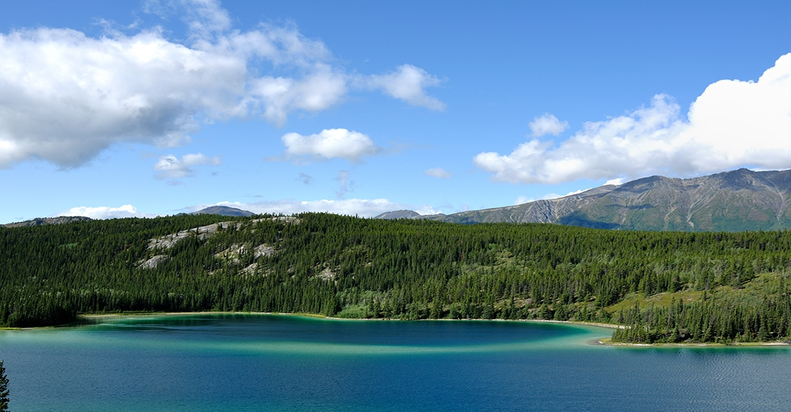 yukon lake in the summer